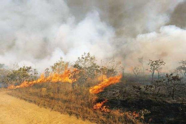 fields fire2